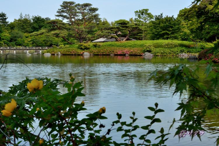 昭和記念公園撮影実習2(1)変更済