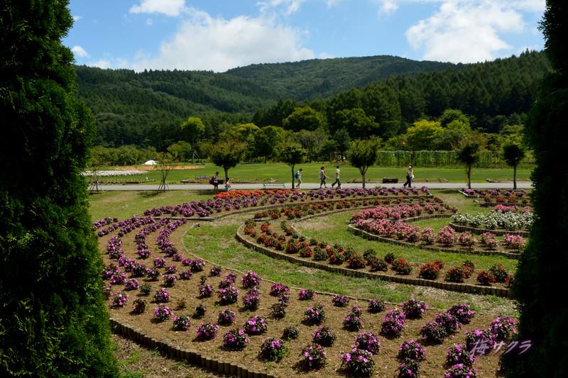 花の都公園5(1)変更済