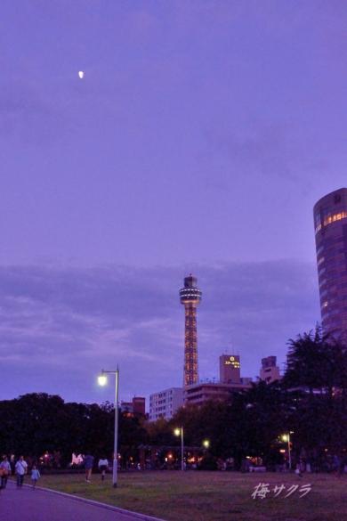 横浜2(7-1)変更済