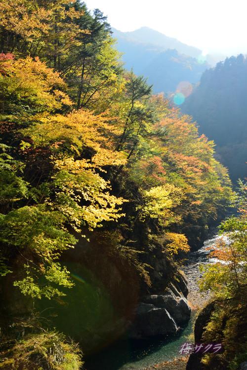 中津川渓谷2(6)変更済