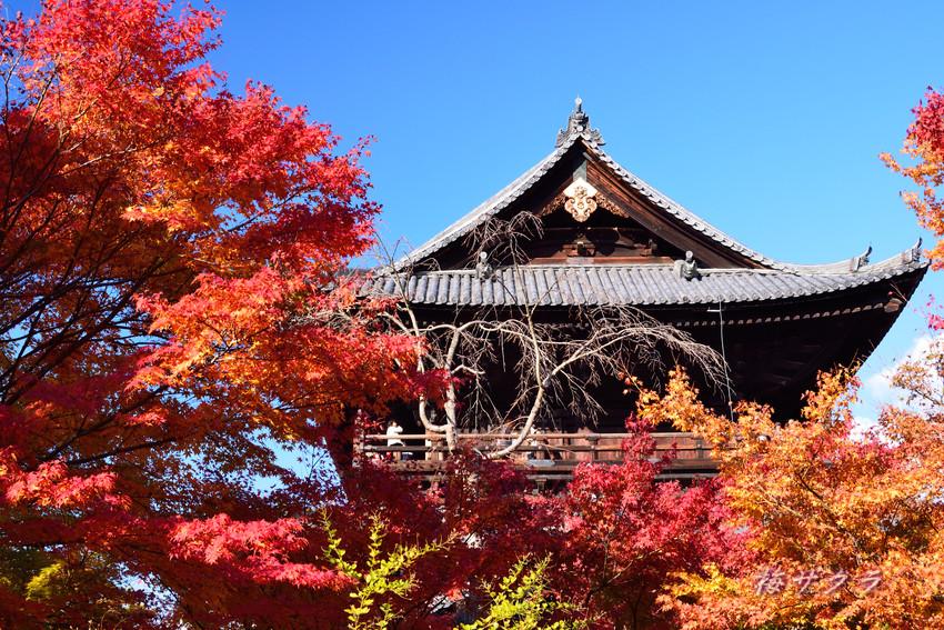 京都天授庵1(1)変更済