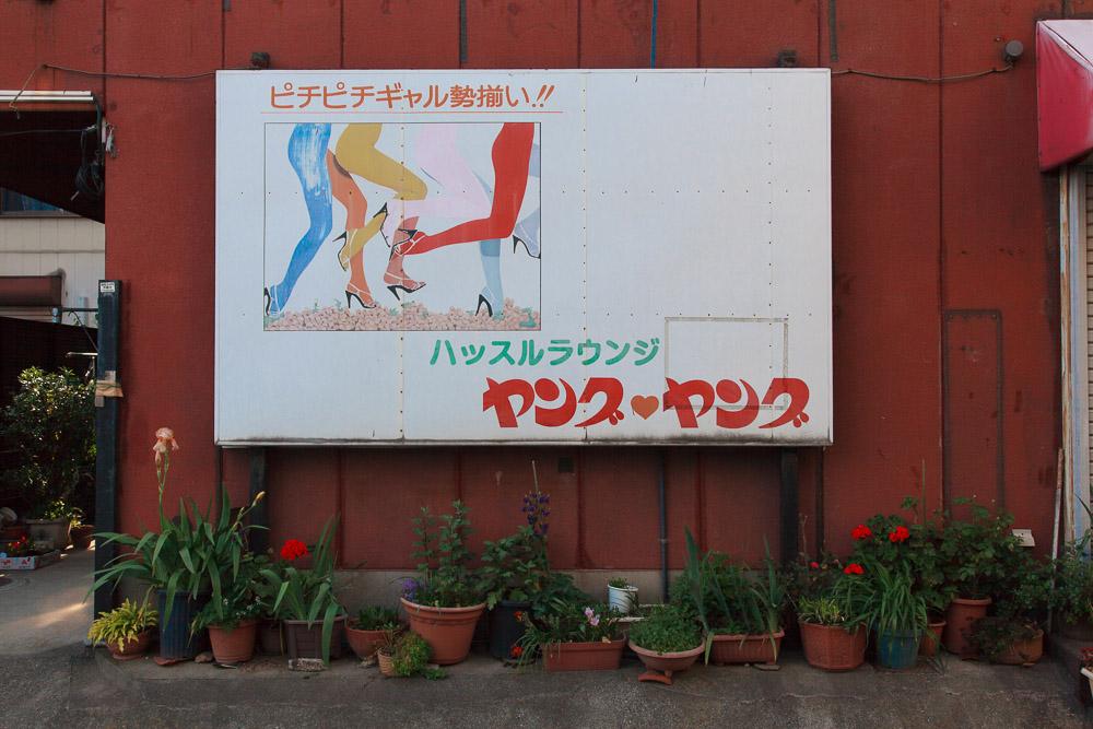 130504伊勢﨑24 (1 - 1)