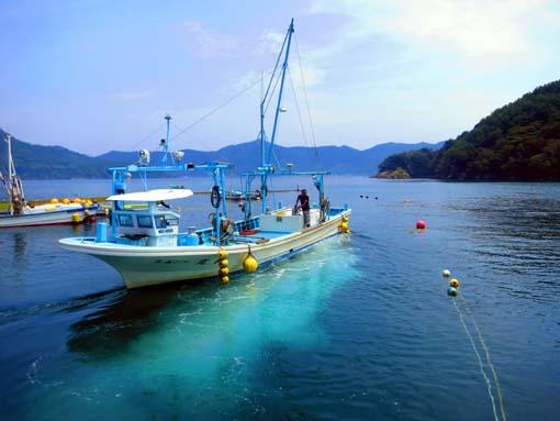 2012年 雄勝町 成澤さんの漁船と綺麗な雄勝湾