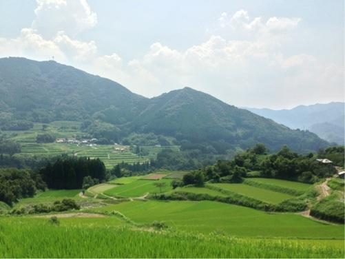 天岩戸神社への道 神々が住んでいそうな山