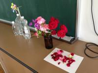 mini花のある理科室