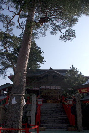 赤い!太鼓谷稲成神社5