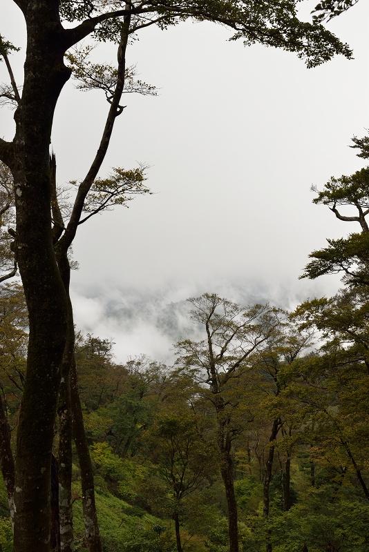 英彦山 (12)