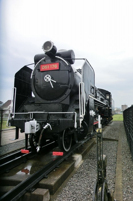 D51 (2)
