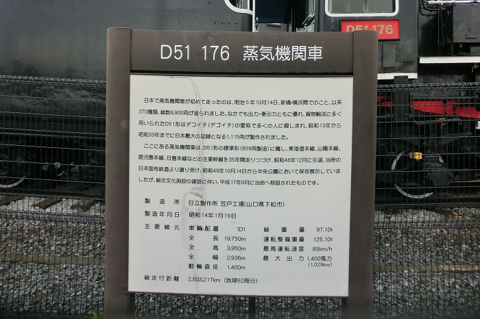 D51 (1)