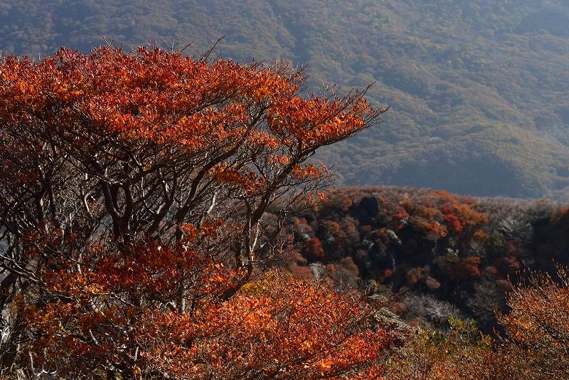 三俣山 (35)