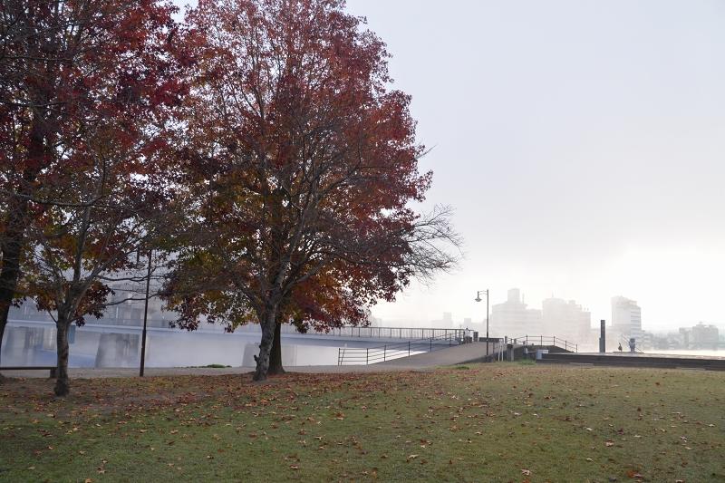 底霧 (7)