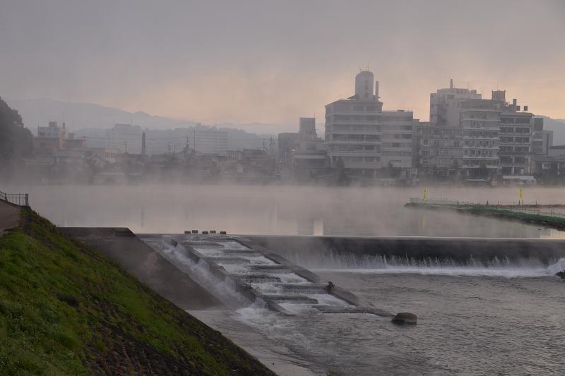 底霧 (5)