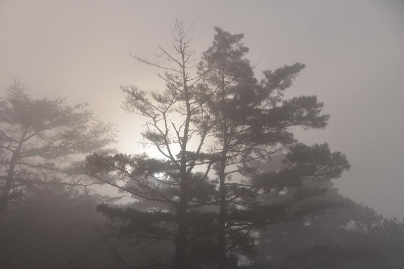萩尾公園 (6)