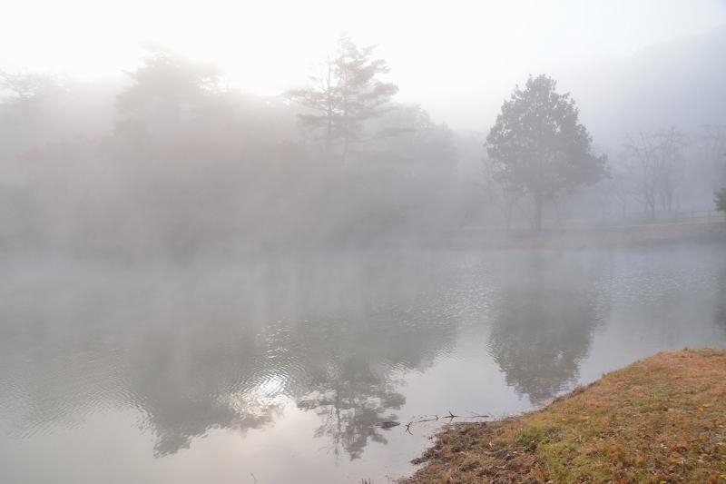萩尾公園 (5)