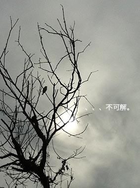 140127_3.jpg
