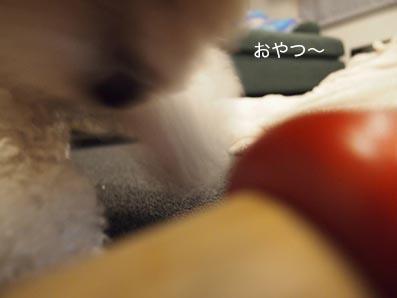 140131_5.jpg