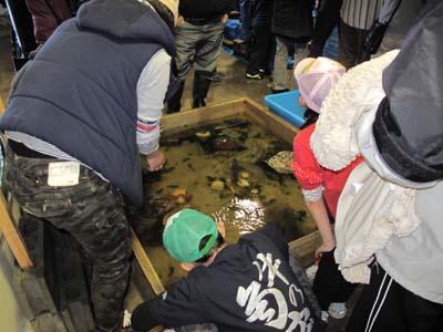 さんぽくさかなまつり2013.5.4 010-1