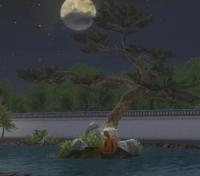 月夜にカヴォ