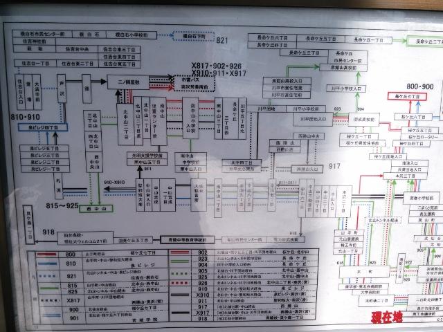 DSC_0196 (640x480)