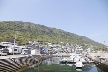 いわいじまの漁港
