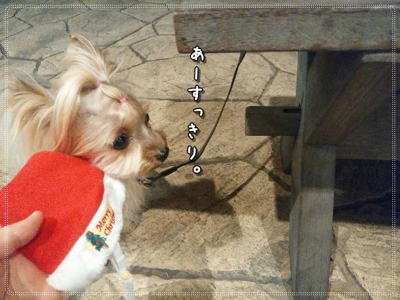 IMG_20141214_180019.jpg