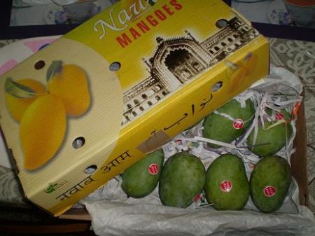 mango-lucknow.jpg