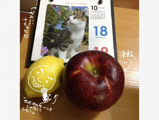 IMG_5210.jpg