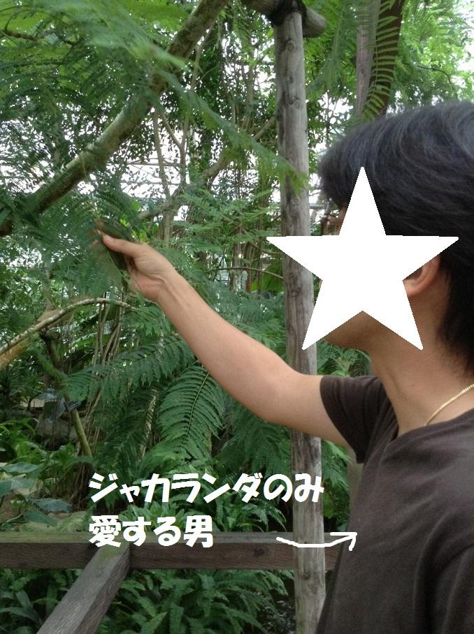 gogeru6.jpg