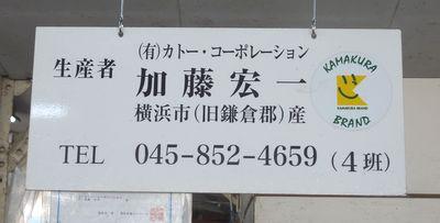 kamakuranoukyou3.jpg