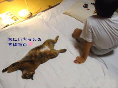 musuko13.jpg