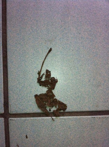 samuraileaf-9741.jpg