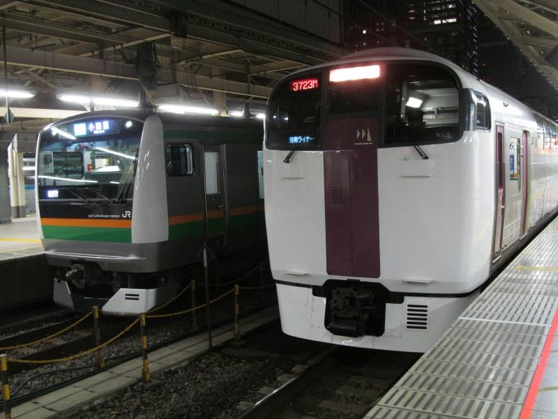 石川台の鉄活動日記-215&E233 東京