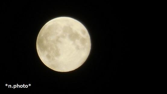 月 (1)