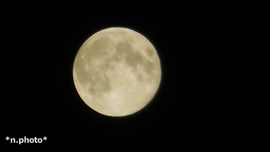 月 (7)
