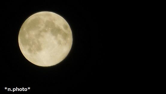 月 (8)