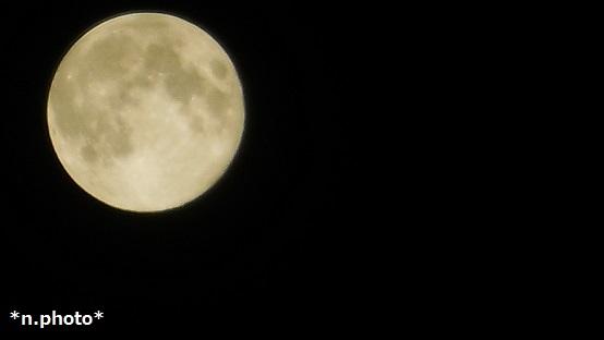 月 (9)