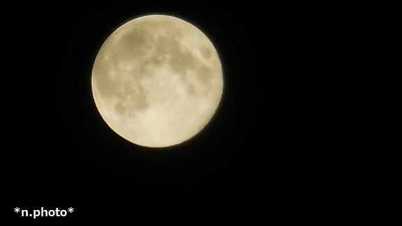 月 (10)