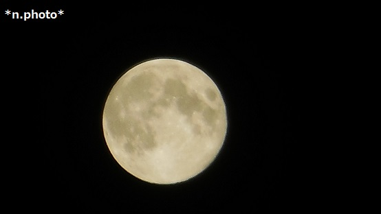 月 (11)