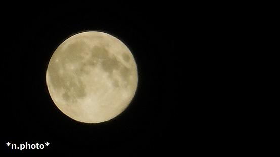 月 (12)