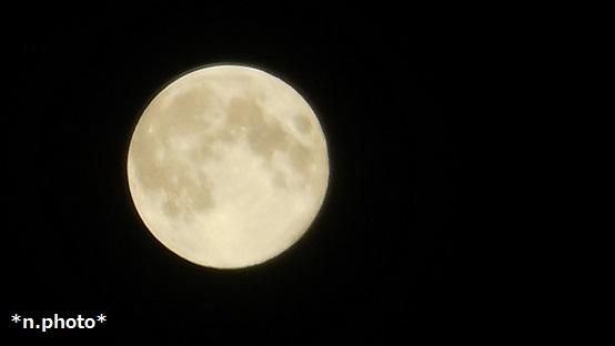 月 (14)