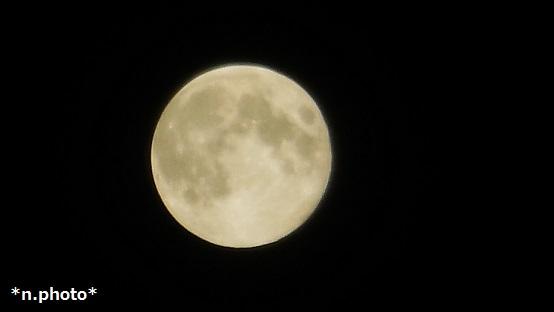 月 (16)