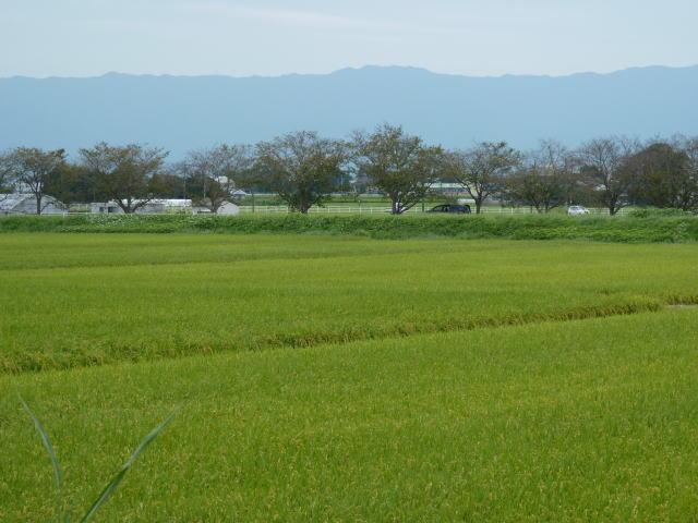 筑前町 田園風景