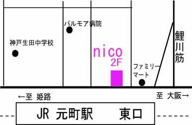 nicomap300-2_20130705180020.jpg