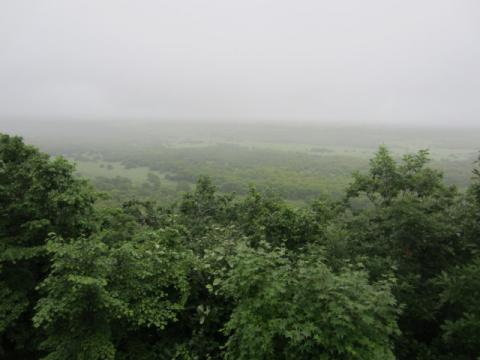 釧路市湿原展望台散策路