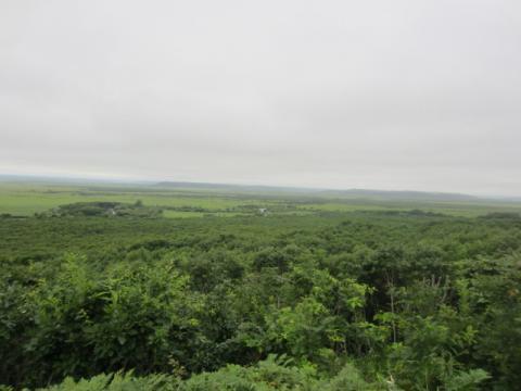 釧路湿原(細岡展望台)
