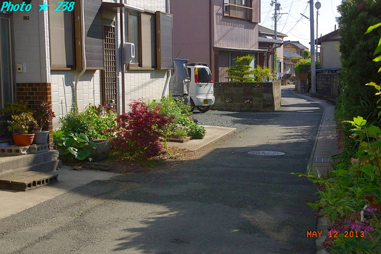 130512-sanpo05.jpg