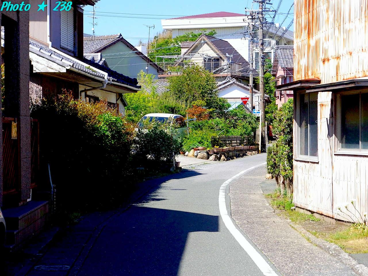 130512-sanpo25.jpg
