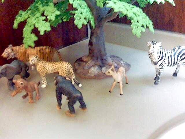 130520-Zoos-.jpg