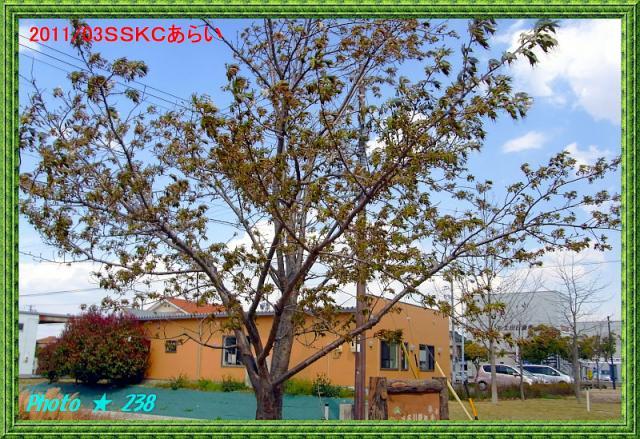 130611-SSKC.jpg