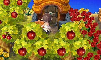 果樹園の真ん中にB